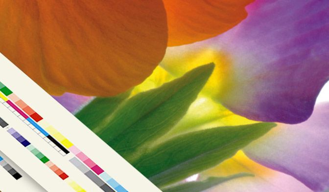 Like paper, DuPont™ Tyvek® support most traditional and digital printing techniques