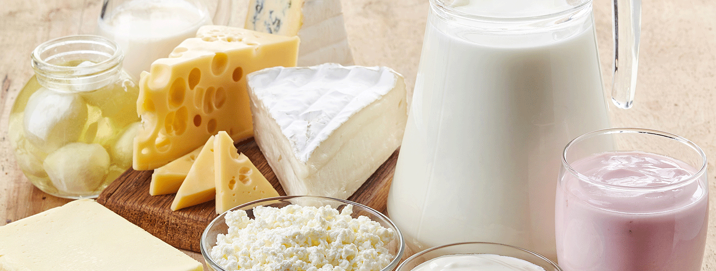 Dairy-enzymes-1.png
