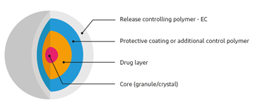 Illustration of the layers in drugs using a barrier membrane coating